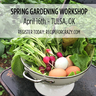 SPRINGWORKSHOP