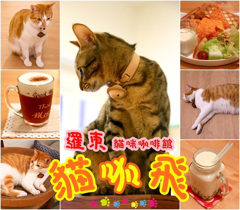 宜蘭咖啡館 羅東咖啡館 宜蘭貓咪主題咖啡館 貓咪咖啡店 貓咖飛 咖啡 茶飲 下午茶 輕食 貓咪寄宿