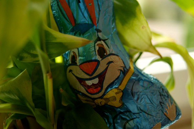 Foto/Woche: KW12 - Frohe Ostern