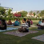 Yoga-Satra-ajmer-apr-2016
