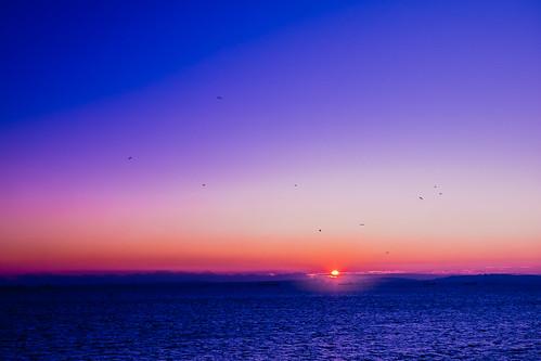 sunrise yokohama firstlight yokohamasymboltower