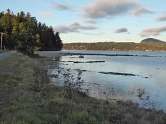Kukutali Preserve 0358