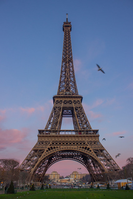 Pink sunrise by the Eiffel Tower from Champ De Mars