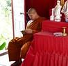 Modern Buddhist monk