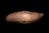 Suesskartoffel by Stanco