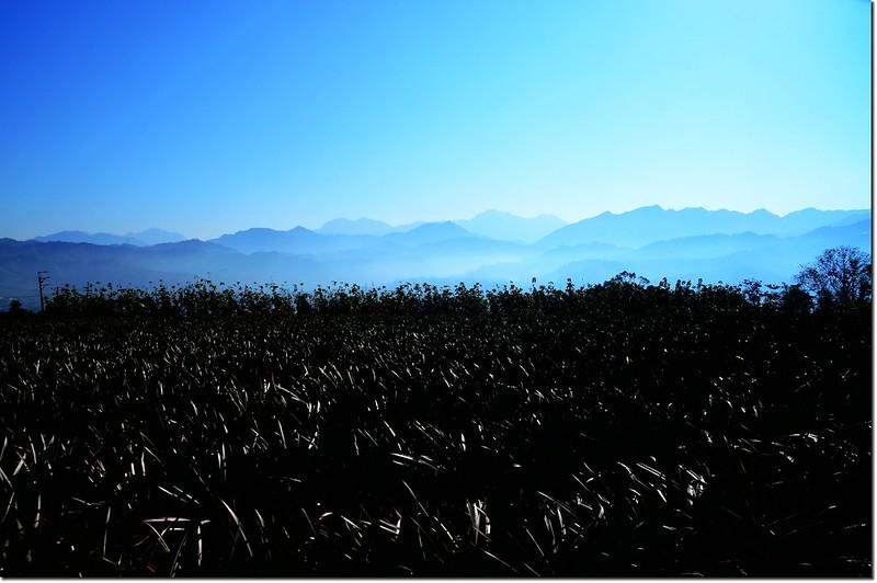 江西林山山頂向東展望 1