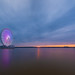 Capital Wheel by Theresa Rasmussen