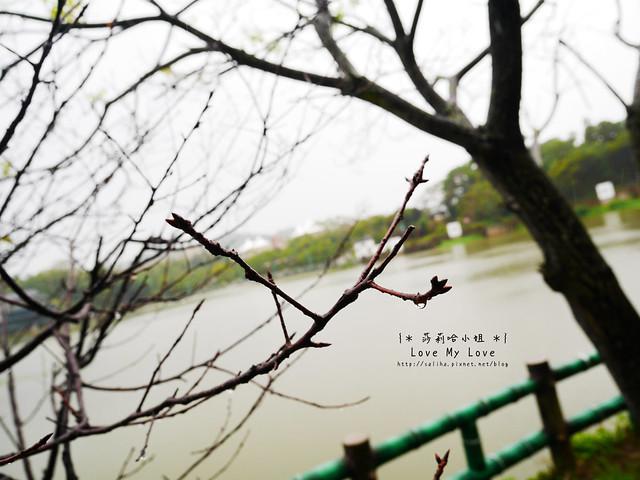新竹一日遊景點青草湖 (27)