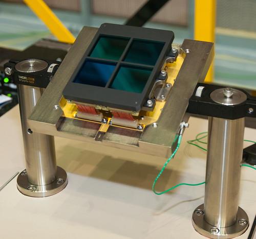 JWST NIRCam Detectors
