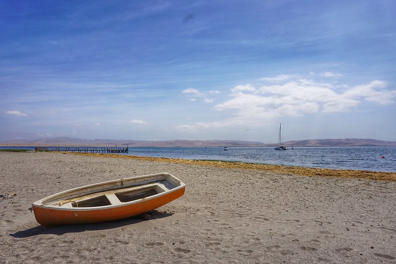 The Spanish Challenge: a Surprise Return to Paracas, Peru