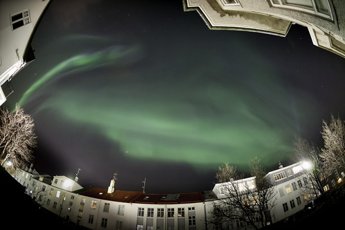 A Splendid Display of Aurora Borealis over Reykjavik,Iceland