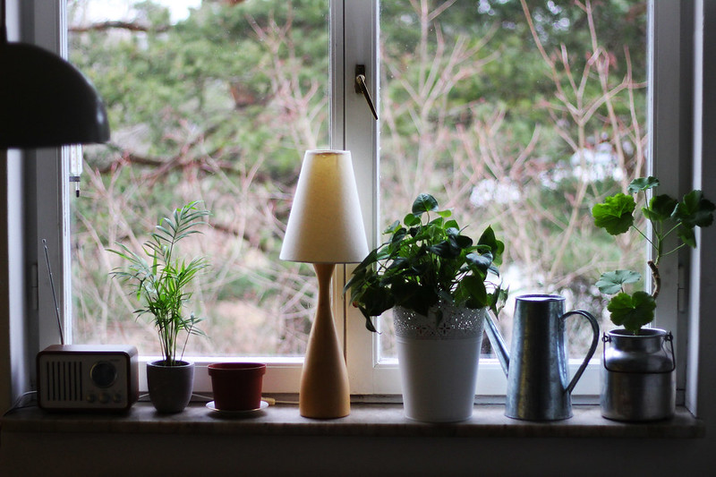 Fluff i fönstren