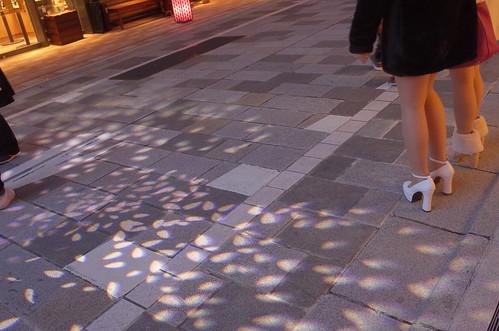 shower of cherry blossoms artificial sakura imaging street 日本桜風街道 06