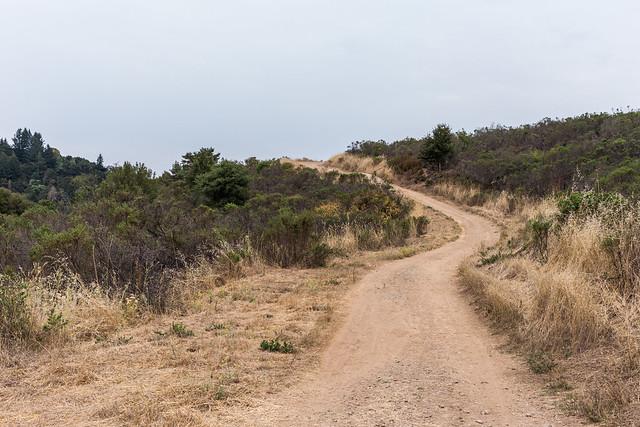 Sunny Jim Trail