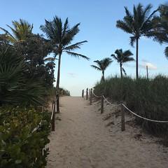 Last day in Miami