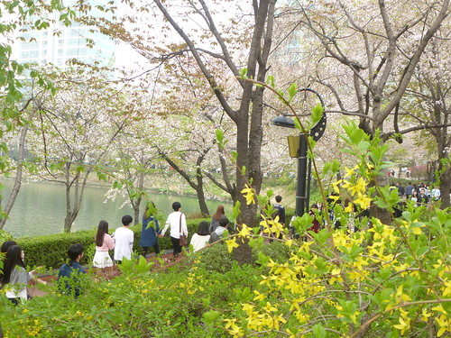 C16-Seoul-Parc Seokcho(17)