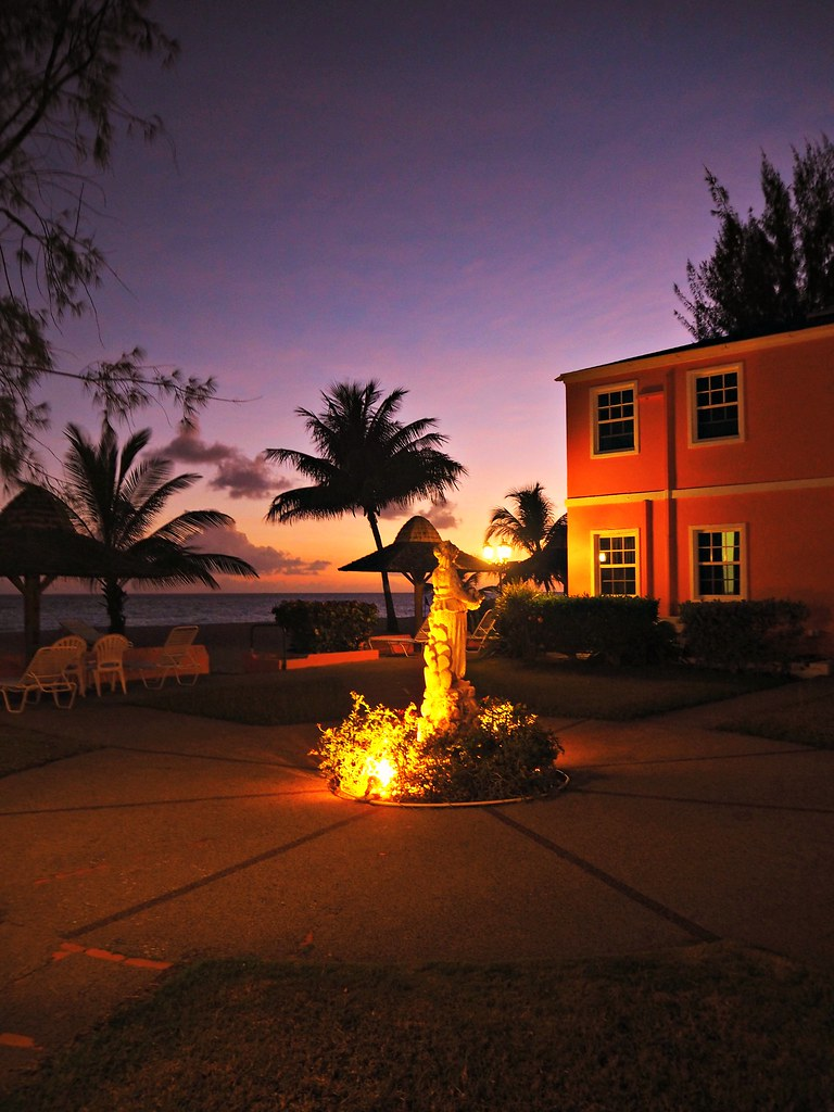 The Little Magpie Southern Palms Barbados Review 38