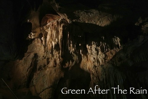 150918d Jenolan Caves _08