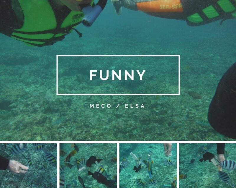 綠島浮潛,綠島美食小吃旅遊景點 @陳小可的吃喝玩樂