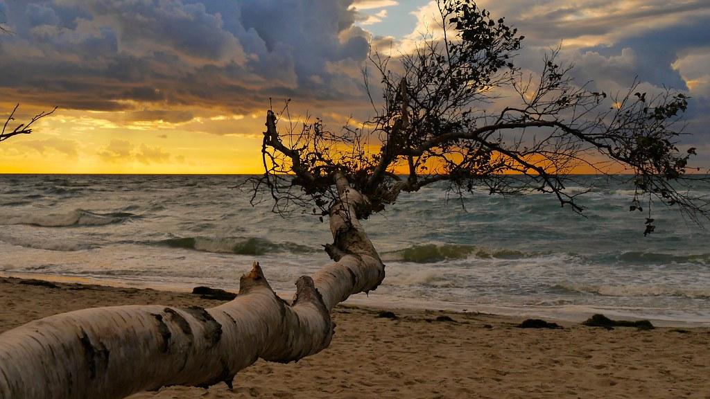 Am Strand von Fischland
