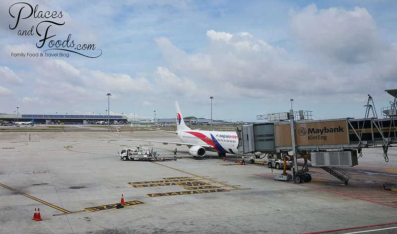 malaysia airlines large