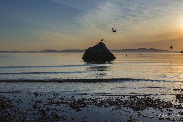 Sunrise in Cordova Bay, Victoria, British Columbia