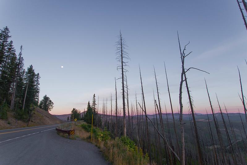 Yellowstone-39