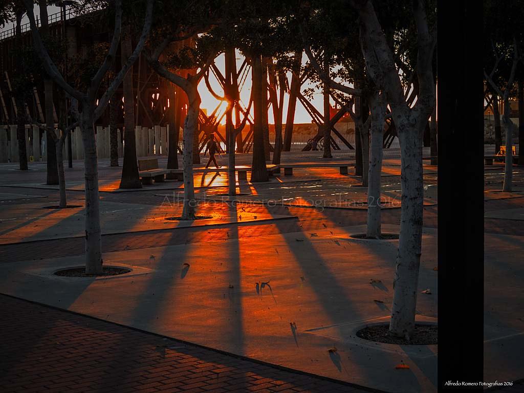 Caminar hacia la luz