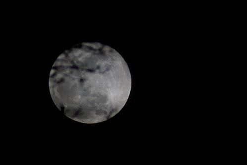 Snow Moon Rising(IMG_0348)