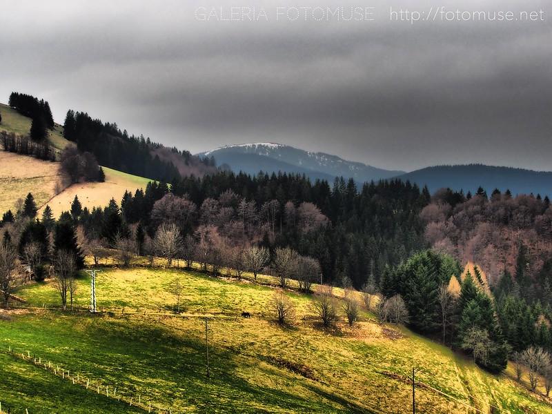 Schauinsbelchenland