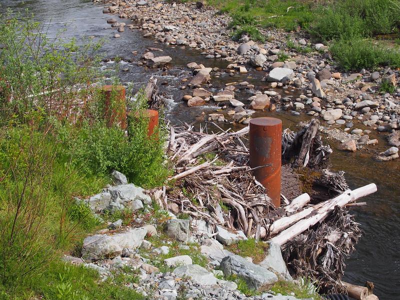 Mashel River: The logs make it look cool.