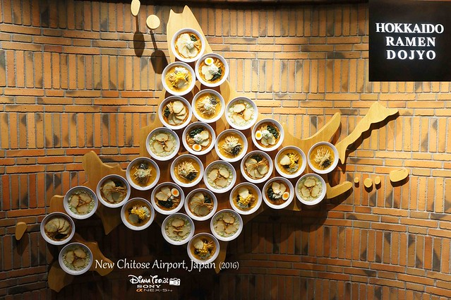 2016 Japan, New Chitose Airport 03