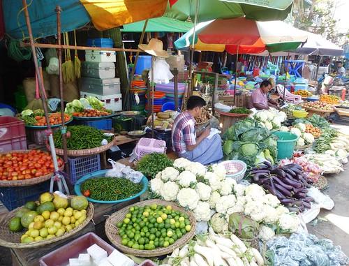 Birmanie-Yangon-Twante-Marche (4)
