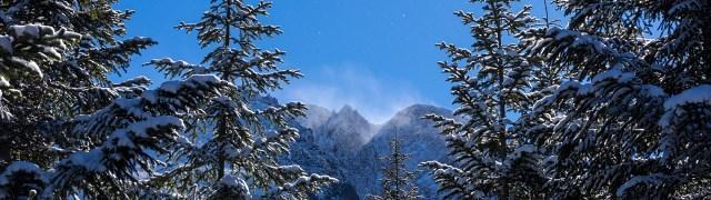 序盤のシラビソ樹林帯から山頂付近を仰ぐ・・・強い風が吹いているようだ