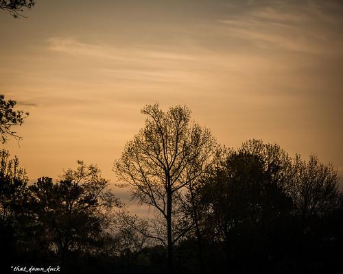 nature sunrise unitedstates southcarolina