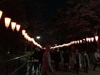 Japan - Tokyo (Ueno)