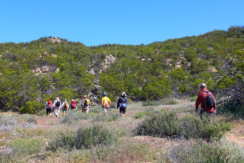IMG_2673 Pacific Crest Trail