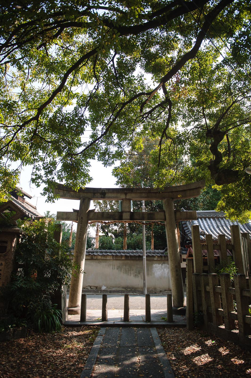 2015VQ@Kyoto-602