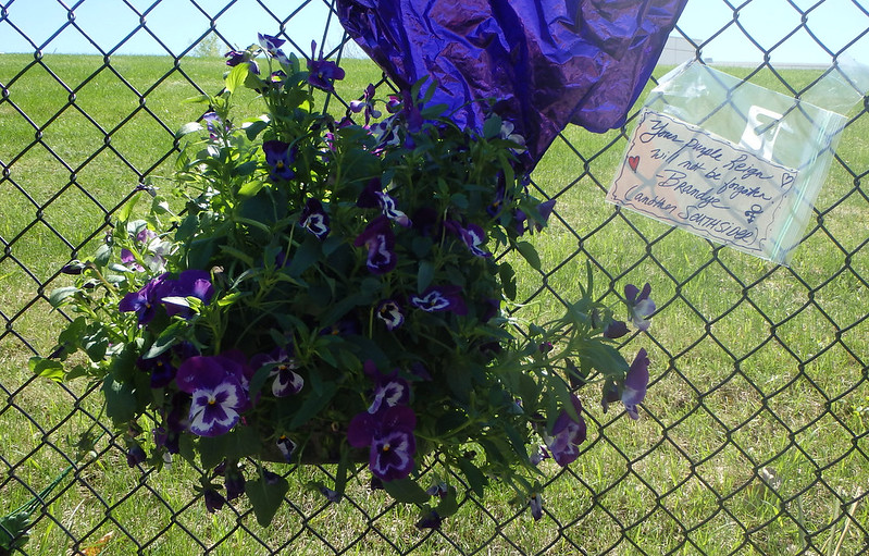 handwritten note: Your purple reign will not be forgotten, next to a hanging basket of purple pansies