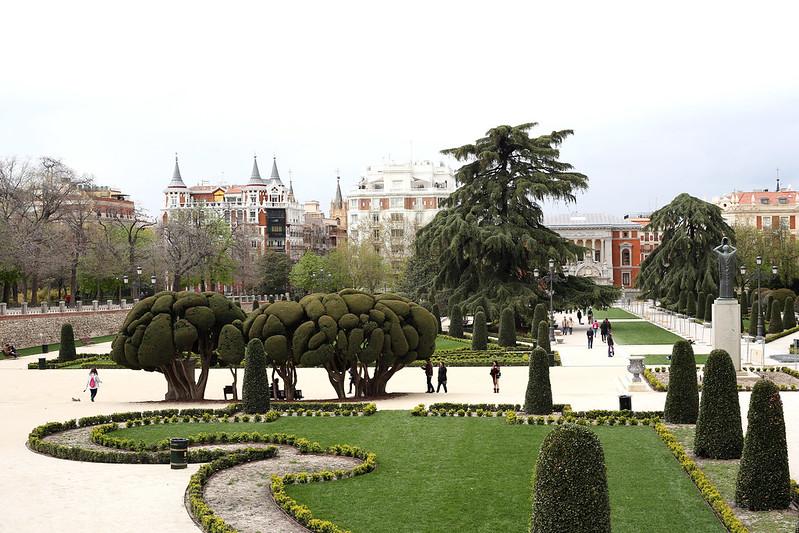 parc-du-retiro-madrid-arbre-cervelle