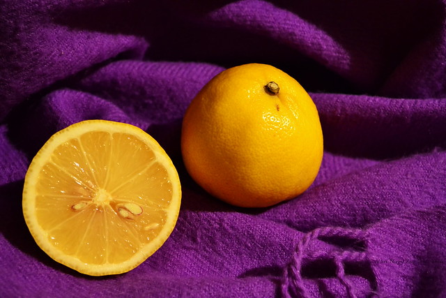 Catchy Colors Purple Yellow A Gallery On Flickr