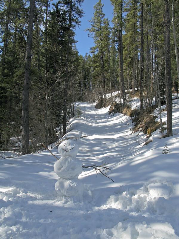 2008 West Bragg Creek-1024