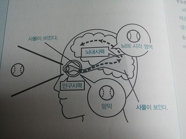 독서노트 | 기적의 시력 회복법