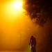 night road 夜路 . 晚上的豐原公老坪觀景台旁道路 in Taiwan Taichung . 台灣台中 . DSC_9065