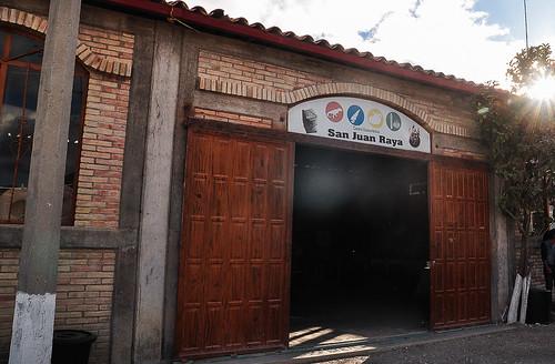 San Juan Raya - Biznaga Gigante (02)