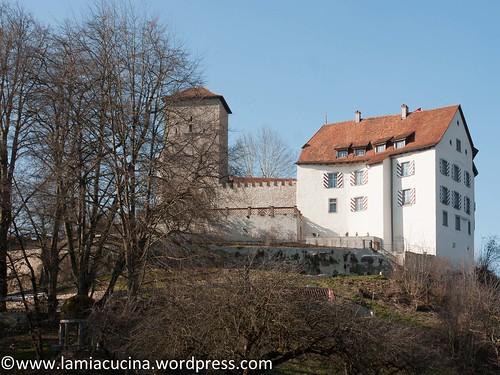 CH-5106 Veltheim- Schloss 2016 03 10_0448