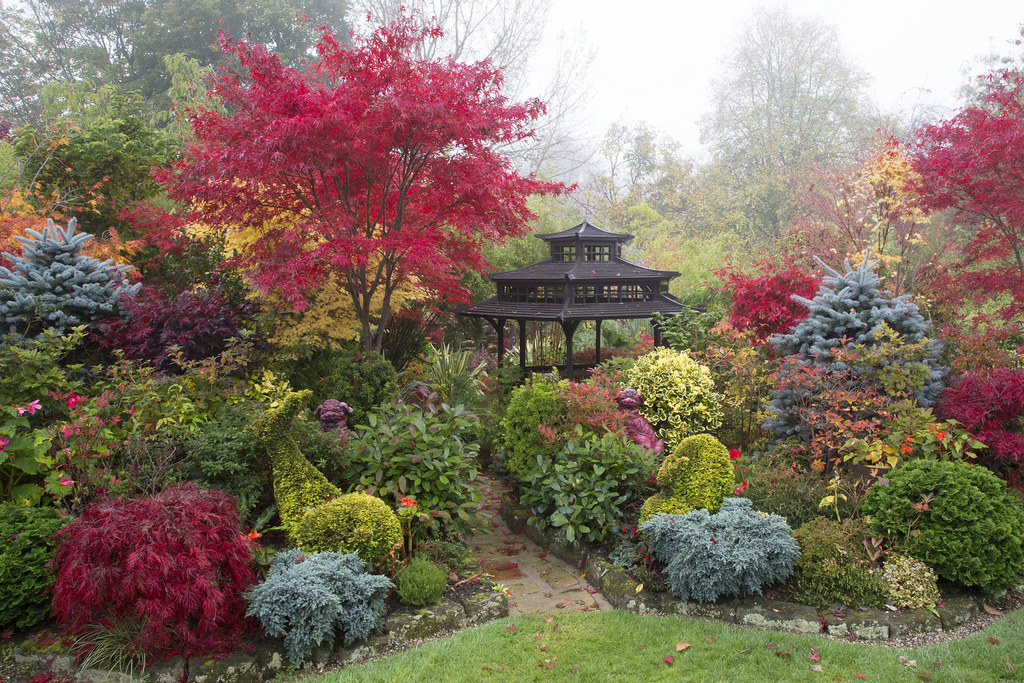 Four Seasons Garden 39 S Most Recent Flickr Photos Picssr
