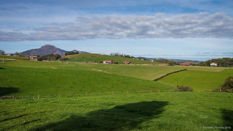 Los verdes prados