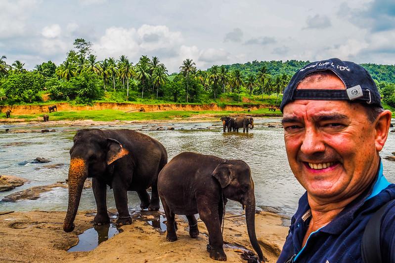 P4193250 Vagamundos 16 Sri Lanka Orfanato Elefantes Pinnawala
