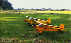 RC Piper J3 CUB
